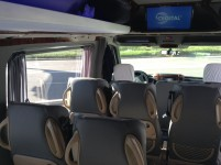 21 seater Mercedess sprinter 515 VIP Silver in Kharkiv with driver.